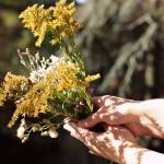 bouquetofweeds2